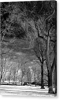 Past The Trees In Central Park Canvas Print by John Rizzuto