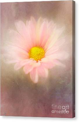 Pastel Beauty Canvas Print