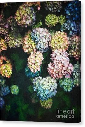 Floral Arrangement Canvas Print - Pastel Colored Hydrangeas by Amy Cicconi