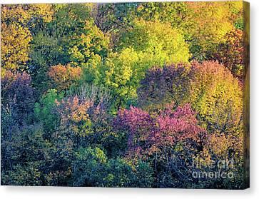 Pastel Colors Of Fall Radnor Lake Nashville Tn Canvas Print
