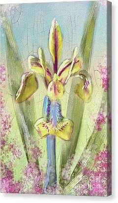 Canvas Print - Pastel Iris by Lois Bryan
