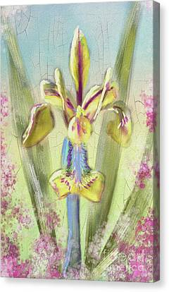 Canvas Print featuring the digital art Pastel Iris by Lois Bryan
