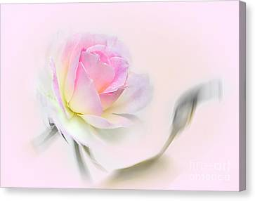 Pastel Passion Canvas Print by Kaye Menner