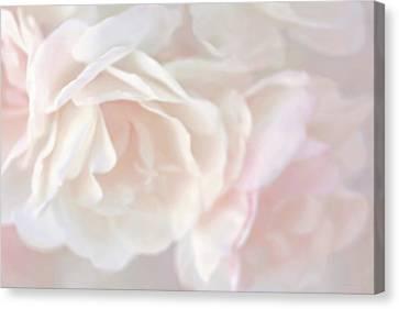 Pastel Rose Flowers Canvas Print