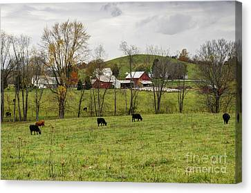 Canvas Print featuring the photograph Pastoral by Larry Ricker