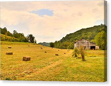 Pastorial Framland In Kentucky Canvas Print by Douglas Barnett