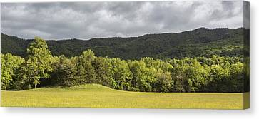 Pastural Grounds Canvas Print by Jon Glaser