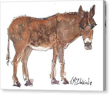 Pasture Boss 2015 Watercolor Painting By Kmcelwaine Canvas Print by Kathleen McElwaine