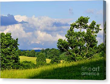 Pasture Fields And Mountains Canvas Print by Thomas R Fletcher