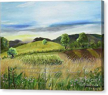 Vino Canvas Print - Pasture Love At Chateau Meichtry - Ellijay Ga by Jan Dappen