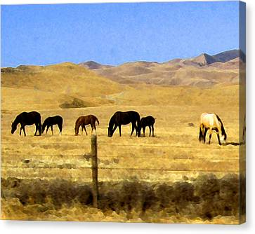 Canvas Print featuring the digital art Pastured Horses by Timothy Bulone
