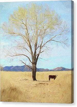 Patagonia Pasture 2 Canvas Print