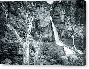 Patagonian Waterfall Canvas Print by Andrew Matwijec