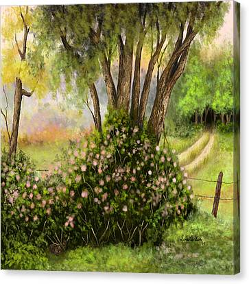 Canvas Print featuring the painting Patches Of Beauty by Sena Wilson