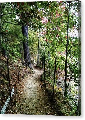 Path Along The Pond Canvas Print