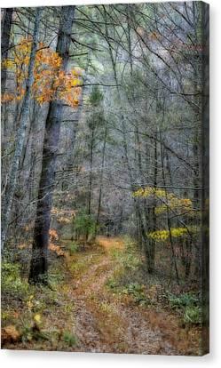 Path At Panther Falls Canvas Print by Kathy Jennings