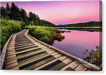 Path By The Lake Canvas Print by Rod Jellison