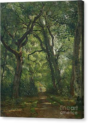 Path In The Forest Canvas Print by Henri Joseph Constant Dutilleux