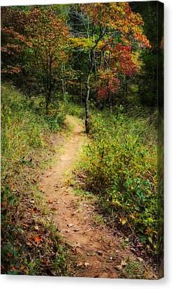 Path In The Prairie Canvas Print by Diana Boyd