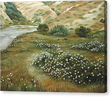 Path Of Flowers Canvas Print by Angeles M Pomata