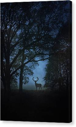 Gothic Canvas Print - Path Of Shadows by Cambion Art