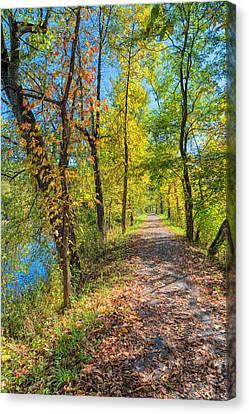 Path Through Fall Canvas Print