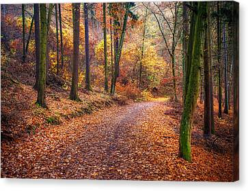 Fall Scenes Canvas Print - Path Through The Colorful  Autumn by Jenny Rainbow