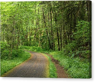 Canvas Print featuring the photograph Path Through The Woods by Jean Noren