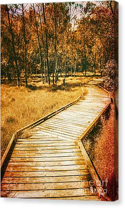 Path To Autumn Marshlands Canvas Print by Jorgo Photography - Wall Art Gallery