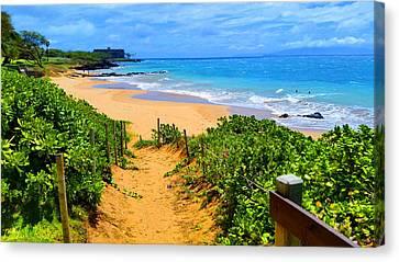 Path To Paradise, Hawaii  Canvas Print