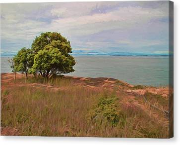Path To Peace Canvas Print by Dan Sproul