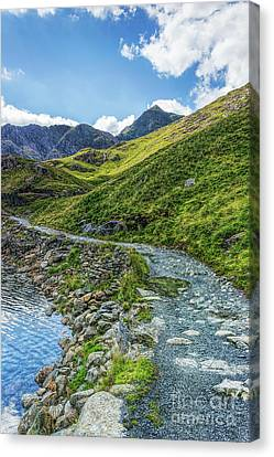 Canvas Print featuring the photograph Path To Snowdon by Ian Mitchell