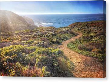 Path To South Rodeo Beach - Marin County California #2 Canvas Print by Jennifer Rondinelli Reilly - Fine Art Photography
