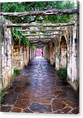 Path To The Alamo Canvas Print by Anthony Jones