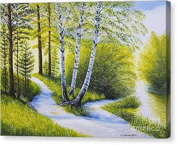 Path To The Beach Canvas Print by Veikko Suikkanen