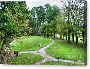 Path To The Mound Canvas Print by Larry Braun