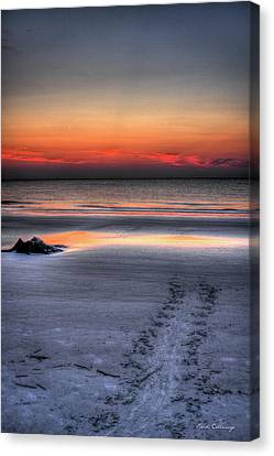 Path To The Sea Jekyll Island Sea Turtle Art Canvas Print by Reid Callaway