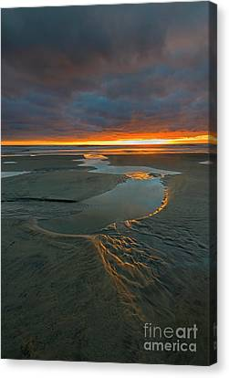 Path To The Sea Canvas Print by Mike Dawson