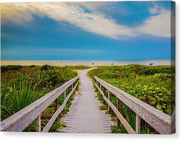 Canvas Print featuring the photograph Path To The Sea by Steven Ainsworth