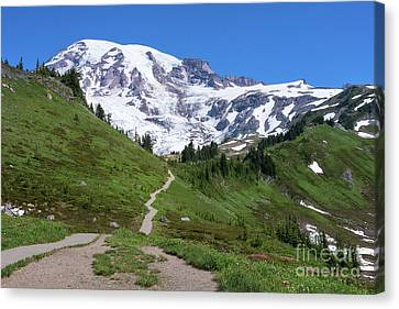 Path To The Summit Canvas Print