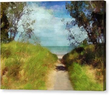 Path To Whihala Beach 2 Canvas Print by Cedric Hampton