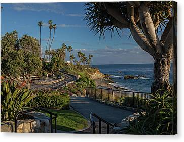 Canvas Print featuring the photograph Pathway Along Heisler Park by Cliff Wassmann