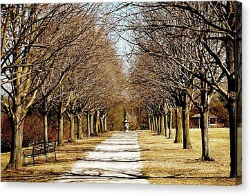 Pathway Through Trees Canvas Print