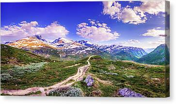 Canvas Print featuring the photograph Pathway To A Valley by Dmytro Korol