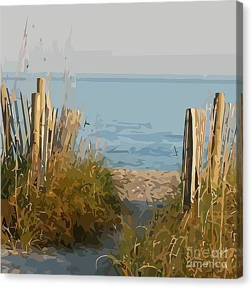 Pathway To The Beach Canvas Print by Clive Littin