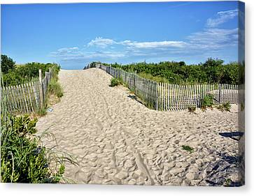 Pathway To The Beach - Delaware Canvas Print by Brendan Reals