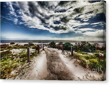Canvas Print featuring the photograph Pathway To The Beach by Douglas Barnard