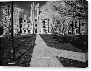 Uconn Canvas Print - Pathway To The Law by Karol Livote