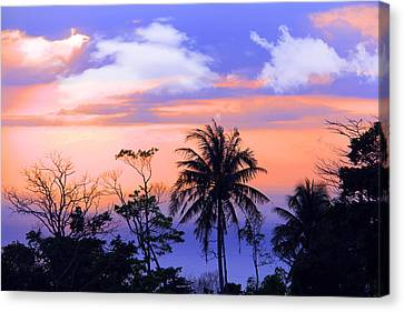 Patong Thailand Canvas Print by Mark Ashkenazi