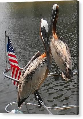 Patriotic Pelicans II Canvas Print